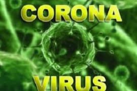 مصرف ویتامین C و سبزیجات راهکاری برای پیشگیری از ابتلا به کرونا