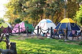 ممنوعیت نصب چادر در پارکهای تبریز
