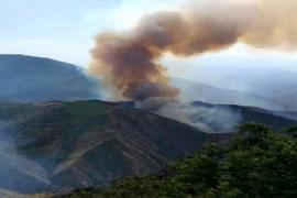 اختصاص ۶۲ میلیارد ریال اعتبار برای حفاظت جنگلهای آذربایجانشرقی