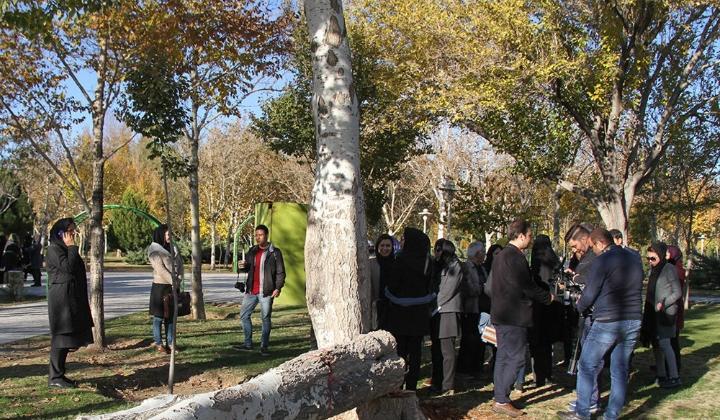 Photo of دستور ویژه برای رصد درختان در معرض آسیب در اصفهان/ شهروندان وضعیت درختان خطرآفرین را به ۱۳۷ گزارش کنند
