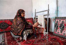 Photo of ۱۰ هزار و ۳۷۲ فرصت شغلی در روستاهای آذربایجان شرقی ایجاد شد