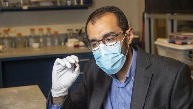 تصویر شناسایی و درمان دقیق تر بیماریهای روده با اختراع محقق ایرانی