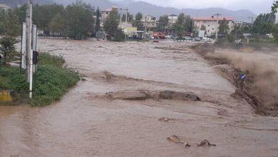 Photo of بارش۲۵۰ میلیمتری باران در تالش/ قطع مسیر دسترسی بسیاری از روستاها
