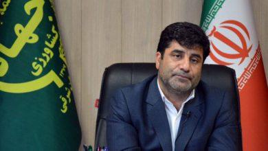تصویر خرید بیش از ۲۷۵ هزار تن گندم در آذربایجان شرقی