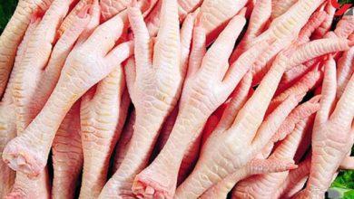 Photo of آیا پای مرغ، از پوکی استخوان و راشیتیسم جلوگیری میکند؟