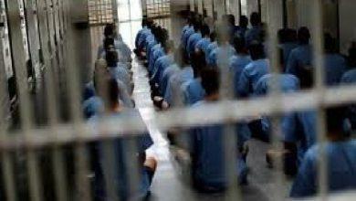 تصویر ۲۲ زندانی ایرانی از عراق به کشور منتقل شدند