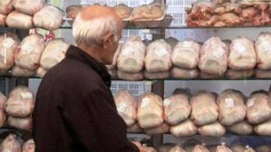تصویر عرضهی ۸۰۰ تن مرغ منجمد به بازار آذربایجان شرقی طی ۱۰ روز آینده