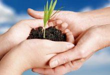 تصویر افزایش میزان بیمه محصولات کشاورزی در آذربایجان شرقی