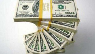 تصویر کشف ۱۸۰ هزار دلار ارز قاچاق در فرودگاه تبریز
