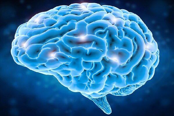 پیش بینی تشنج مغزی با کاشت ایمپلنت