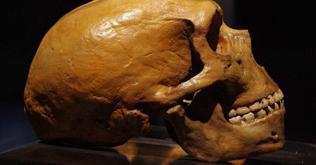 انسانهای اولیه مانند خرسها به خواب زمستانی میرفتهاند!