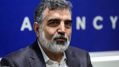 تصویر آبسنگین ایران به حدود ۸ کشور جهان صادر میشود
