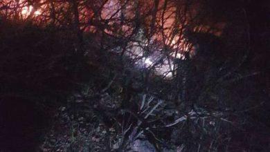 تصویر مهار آتش سوزی در منطقه حفاظت شده ارسباران