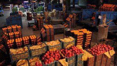 تصویر میادین میوه و تره بار ۲۲ بهمن تعطیل است