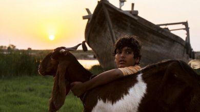 تصویر کودکانی که در قاب «فجر» میدرخشند/ غایبان عجیب فهرست نامزدها