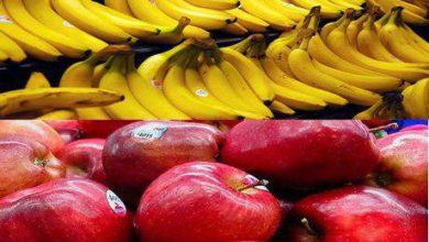 تصویر اوضاع تجارت سیب-موز/۲۲۷ میلیون دلار موز چگونه وارد شد؟