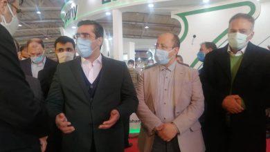 تصویر معاون امور صنایع وزارت صمت در متافو :