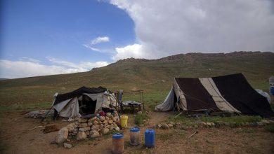 تصویر عشایر دشتی نیازمند حمایت مسئولان/ وضعیت آب و راه بهبود یابد