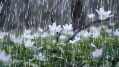 تصویر سامانه بارشی فردا از غرب کشور وارد می شود