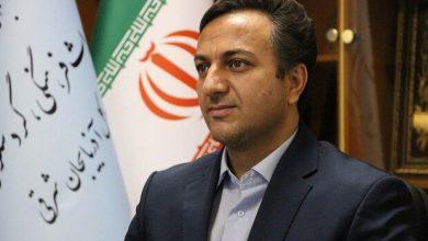 تصویر ۹ مجوز مجموعه داری خصوصی در تبریز صادر شده است