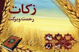 تصویر زکات امر الهی و واجب فراموش شده امروز