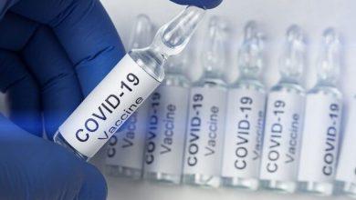 تصویر کارآزمایی ۵ واکسن کرونا به مرحله نهایی رسیده است