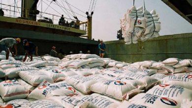 تصویر گمرک خواستار بازنگری در ممنوعیت فصلی واردات برنج شد