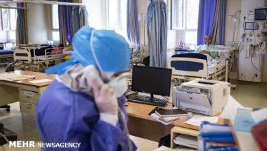 تصویر شناسایی ۲۳۳۷۱ بیمار جدید کرونایی/ ۱۸۴ فوتی در ۲۴ ساعت
