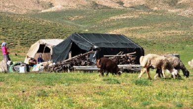 تصویر اختصاص ۳۰ میلیارد تومان اعتبار به طرحهای عشایری آذربایجانشرقی