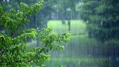 تصویر رگبار باران و رعد و برق و وزش باد شدید در آذربایجان شرقی