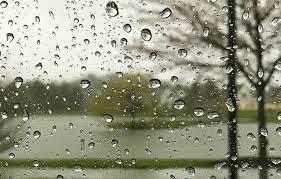 تصویر بارش باران در نوار شمالی کشور