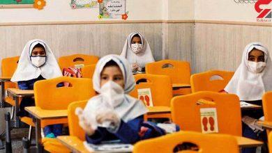 تصویر معاون وزیر آموزش وپرورش:۷۵ درصد والدین با بازگشایی حضوری مدارس موافقند