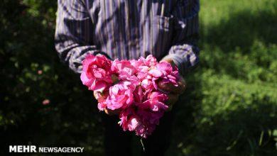 تصویر صدور نخستین پروانه فعالیت گردشگری کشاورزی در آذربایجان شرقی